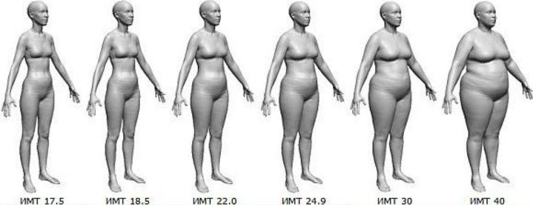 Мифы: лишний вес и продолжительность жизни — Зожник