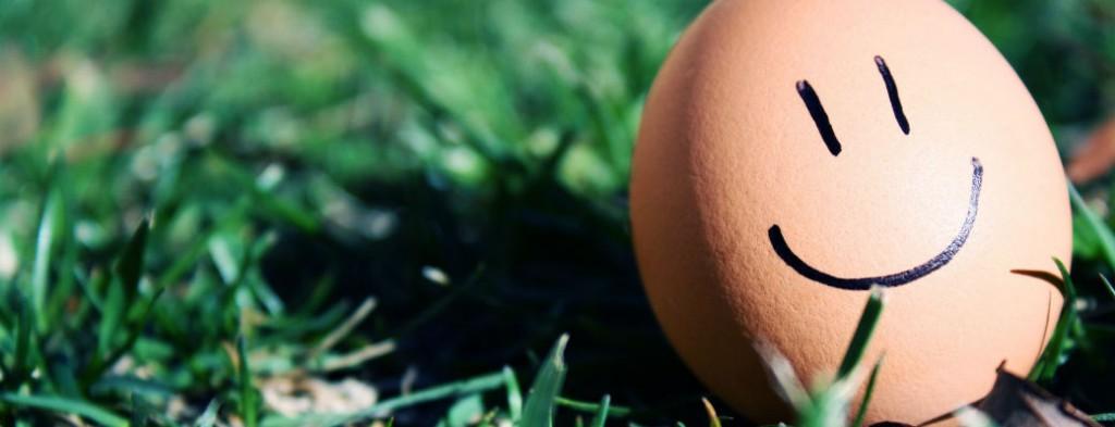 Гид по яйцам