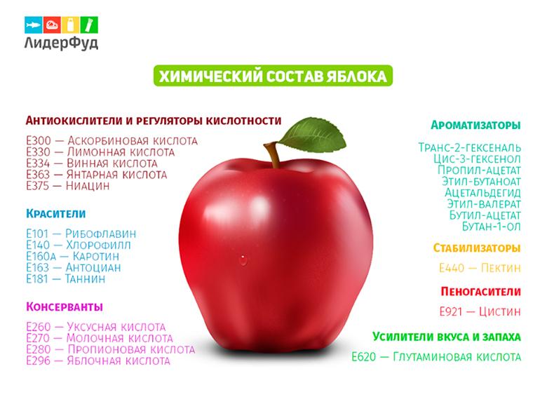 Еда и химия доклад 9797