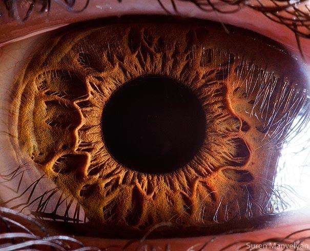 eye-macro-photo-1