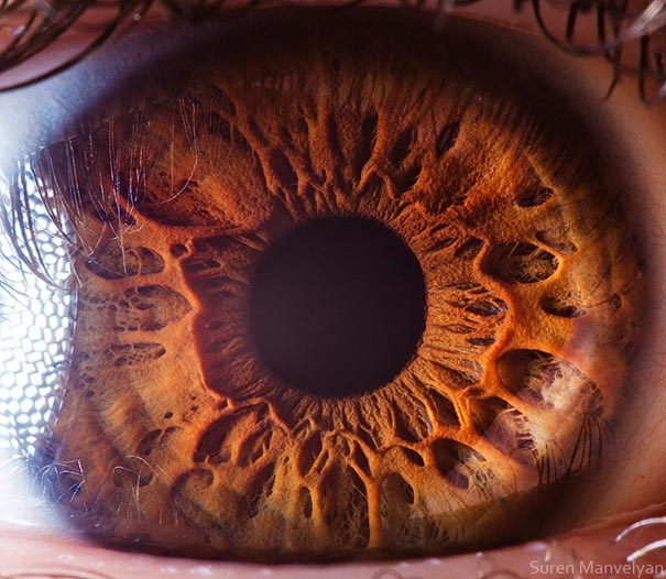 eye-macro-photo-3