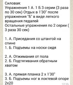 силовая5_