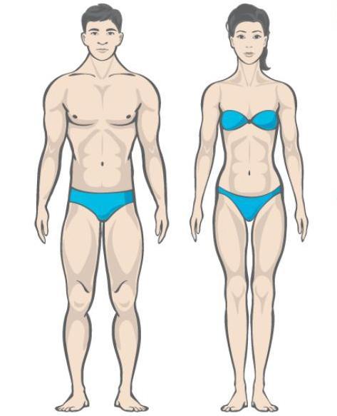питание по калориям для похудения т диетолога