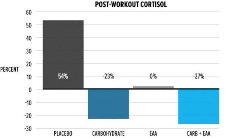post-workout cortisol changes