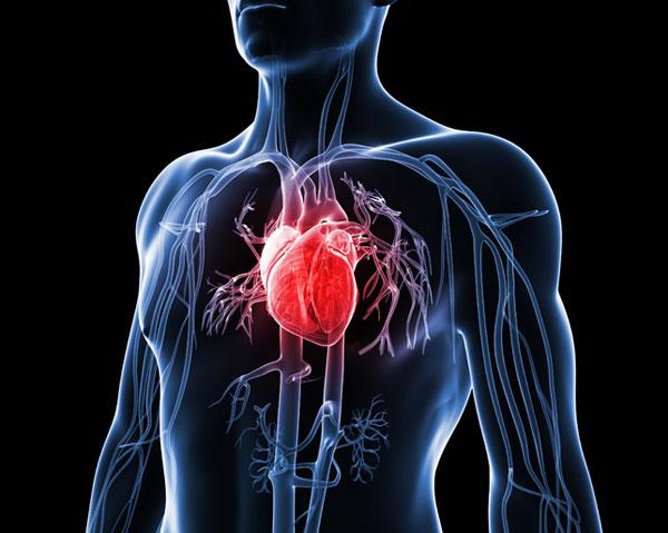 как болит сердце и что делать