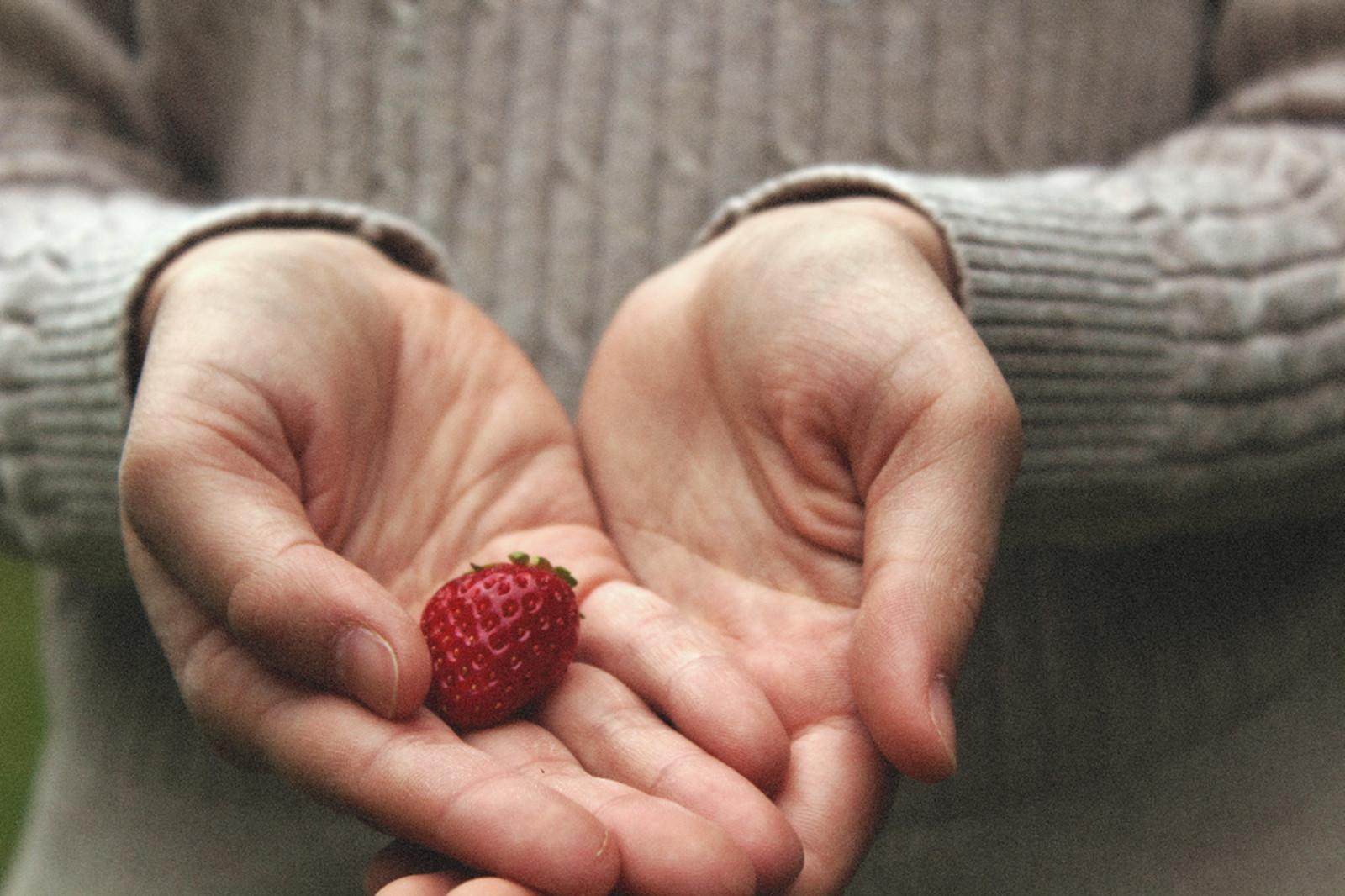 почему нельзя голодать смерть гормонам детокс