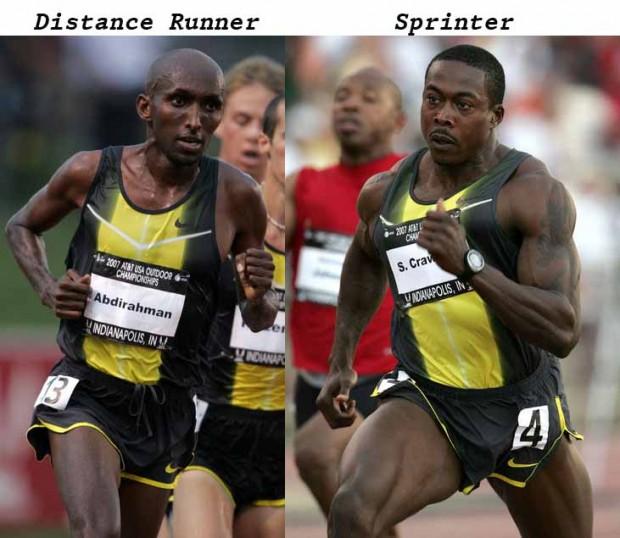Наглядный пример отличия тел атлетов, занимающихся ВИИТ (высокоинтенсивной беговой нагрузки) и бегом на длинные дистанции (работа на выносливость).