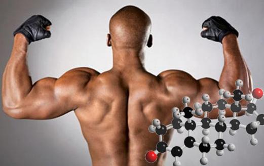 Povyshenie-testosterona