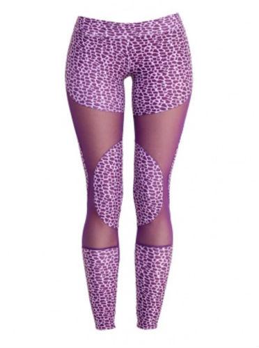 dali leopard