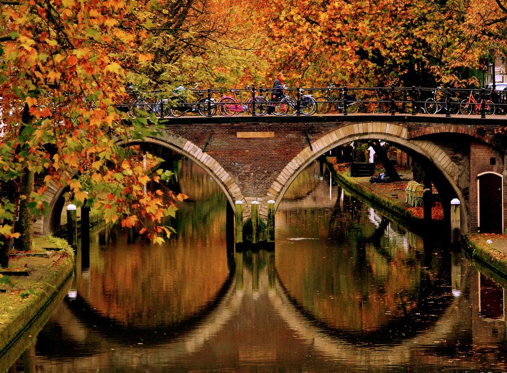 осень в голландии