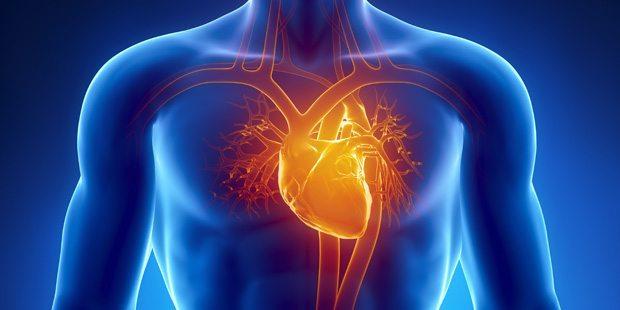 тренировки_для_сердца2