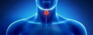 заболевания_щитовидки