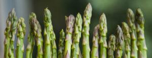 Asparagus 0