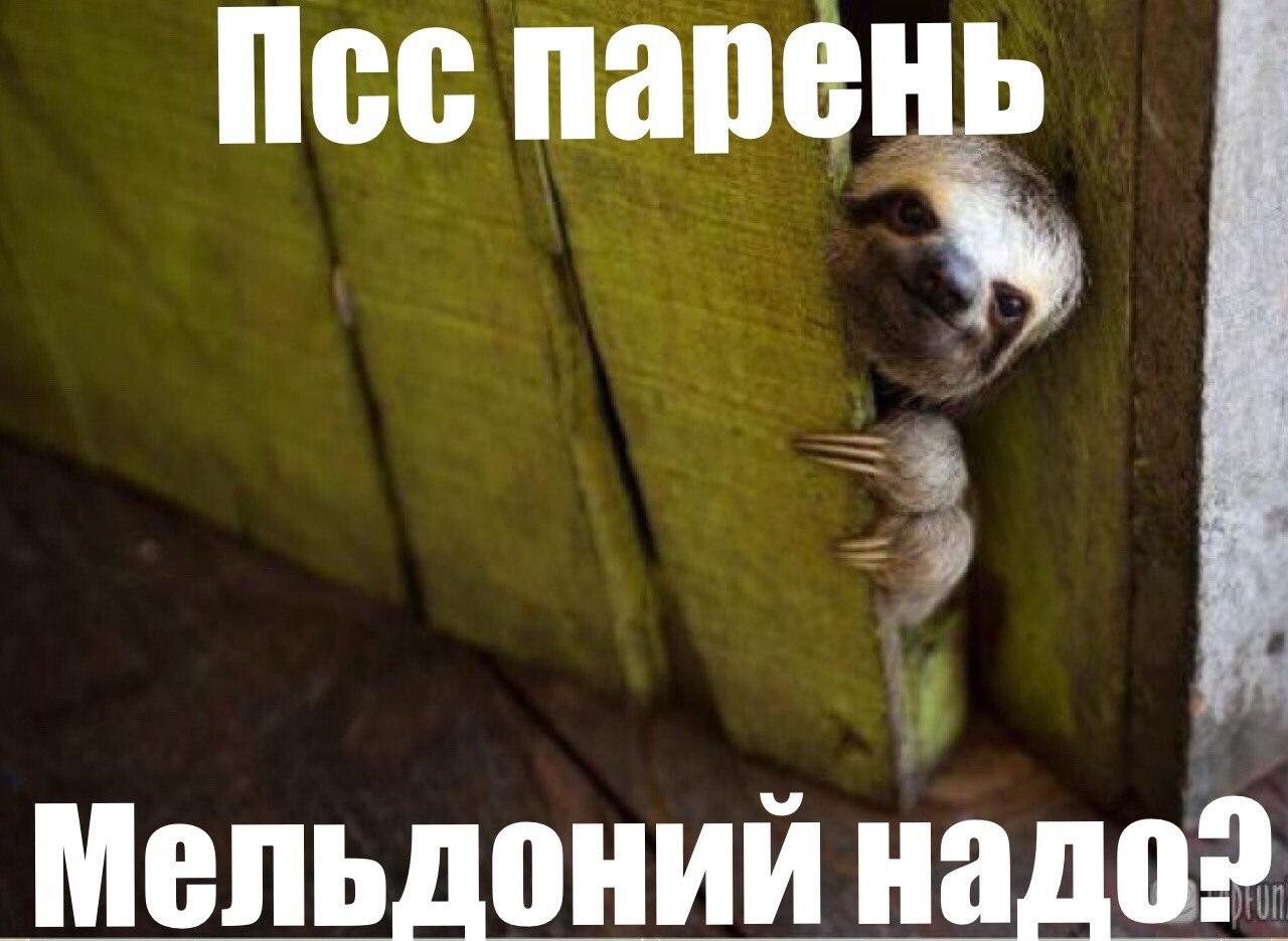 беговой_юмор16