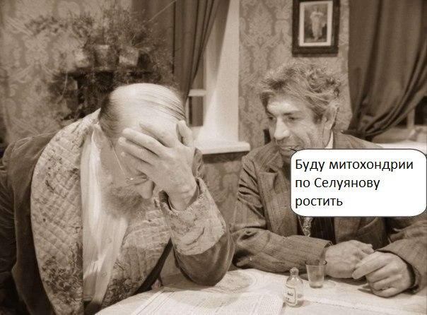 беговой_юмор30