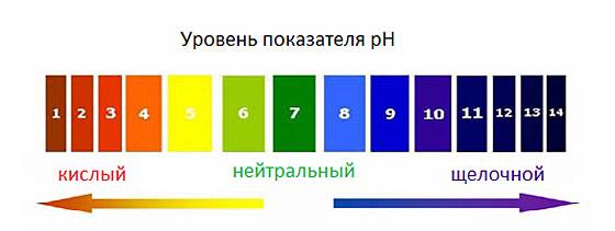 уровень_pH_в_организме