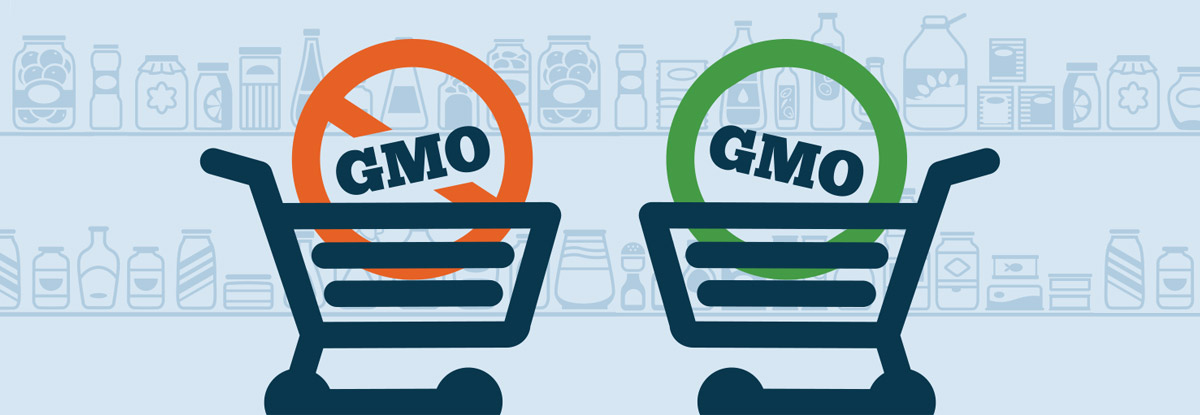 are-gmos-good-or-bad_banner