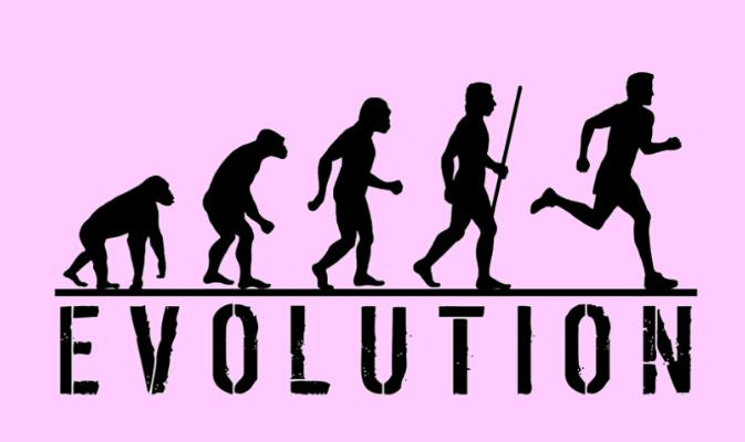 evolution12