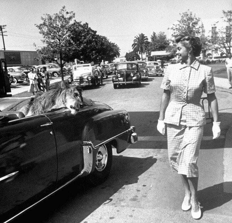 Лев Фаган (это не имя и фамилия) обменивается взглядами со звездой MGM Эстер Уильямс. 1951