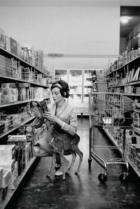 Одри Хепберн и Пиппин на шоппинге, США, 1958 год.
