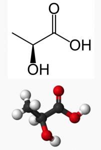 Молекула молочной кислоты (лактата)