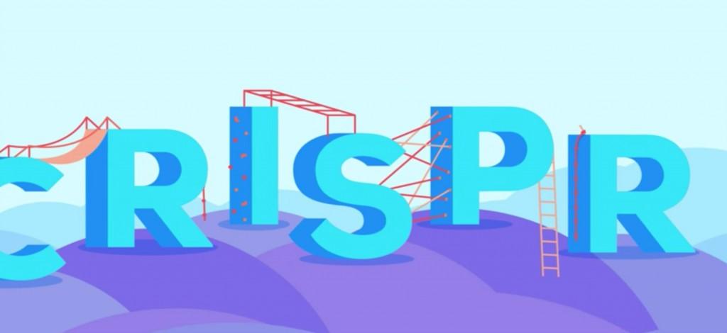 генная_инженерия_cas9_crispr_2