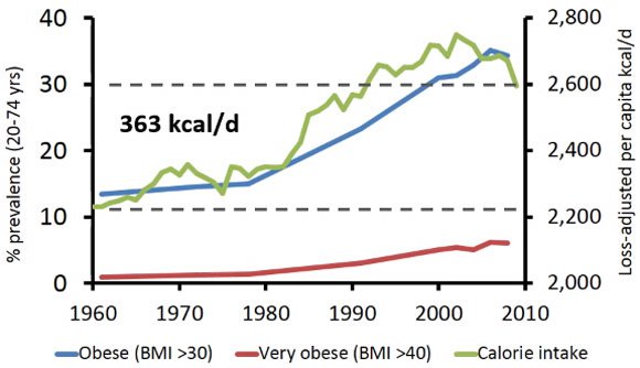 obesity-and-calorie-consumption