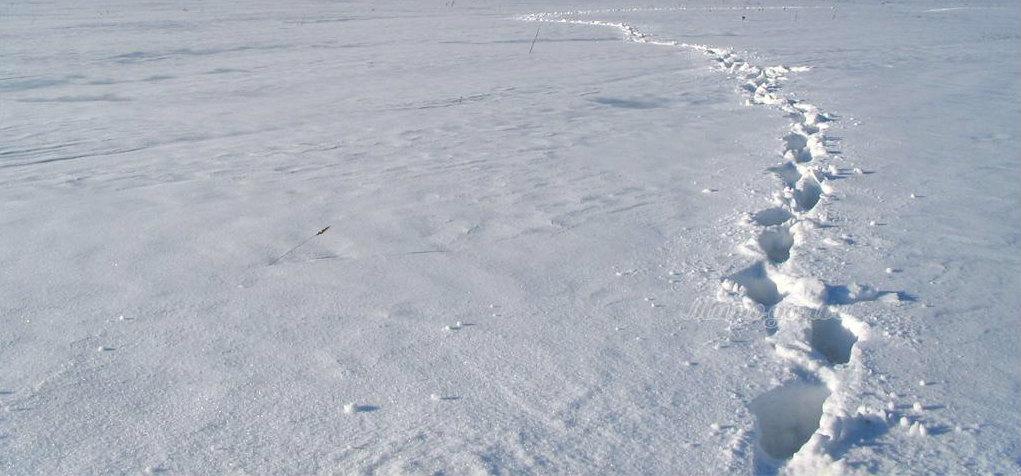 zima2006_I7