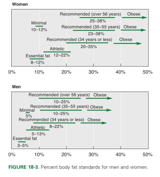 Здоровый процент жира в организме_2