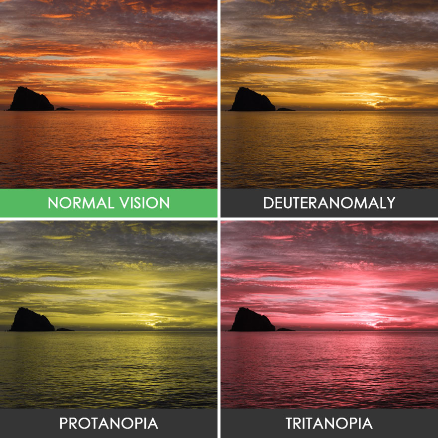 different-types-color-blindness-photos-40