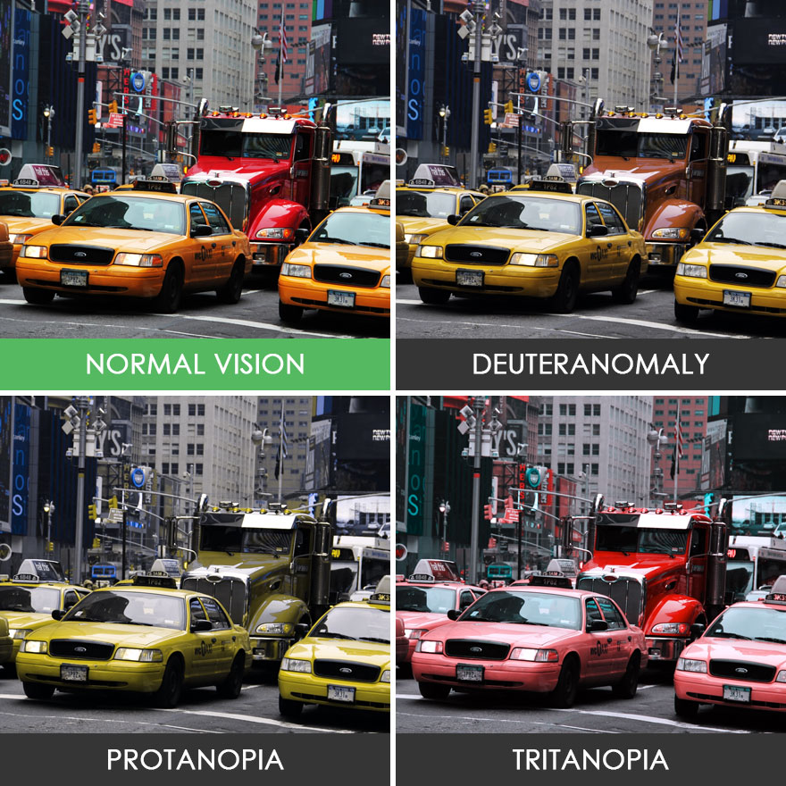 different-types-color-blindness-photos-46