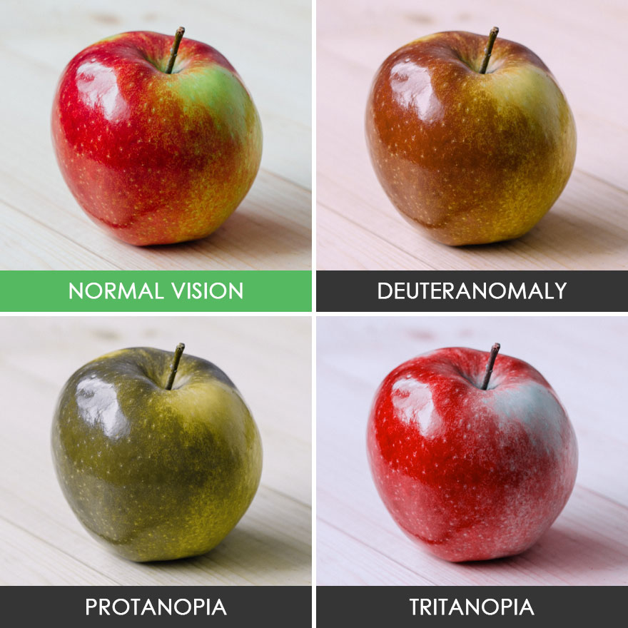 different-types-color-blindness-photos-53-58873353c4381__880
