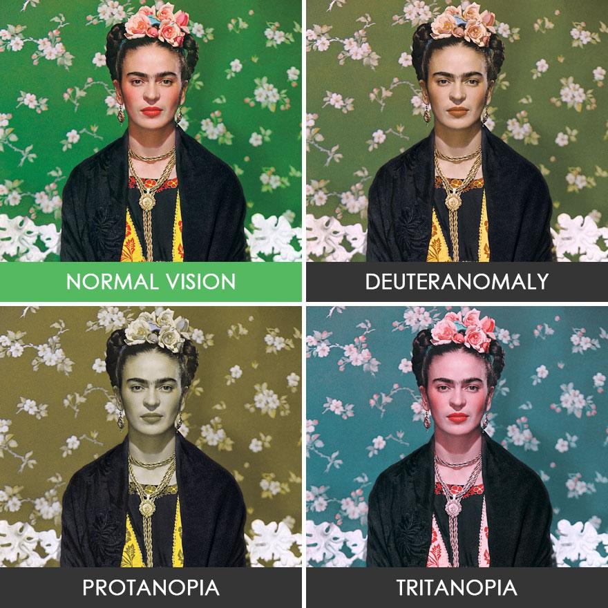 different-types-color-blindness-photos-55-5887487a41de1__880