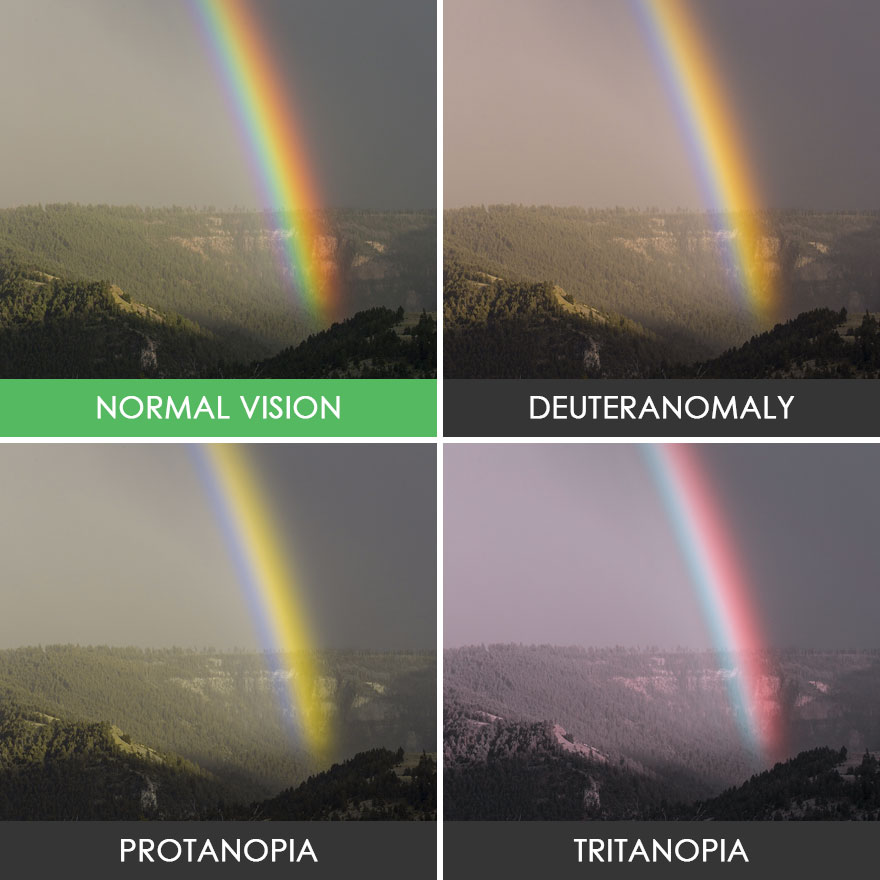 different-types-color-blindness-photos-64-588759c52306c__880