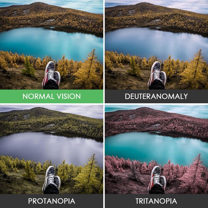 different-types-color-blindness-photos-75-588748cb3de05__880