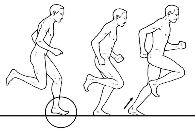 Что Вы знаете о технике и методике обучения бегу на средние дистанции