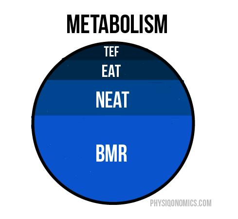 Как удержать вес после похудения совет диетолога