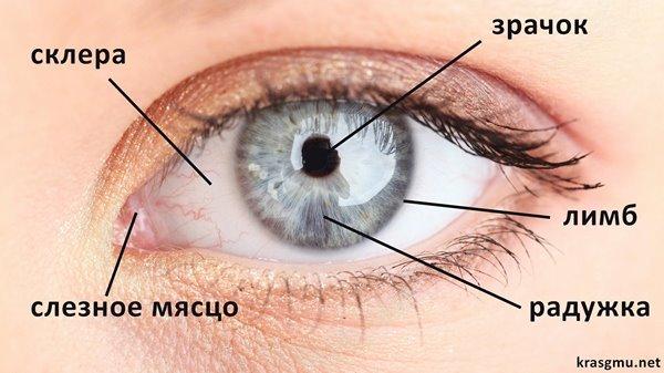 Красные глаза форум